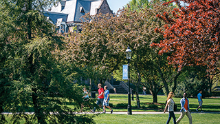 Image of Seton Hall Green. x320